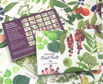 """Philippine Forest Fruits"" Set of 30 Postcards"