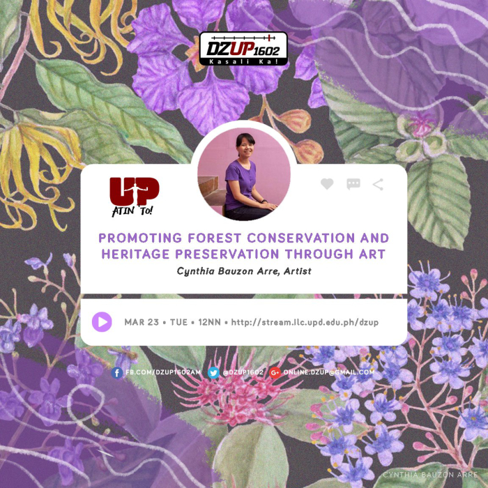 DZUP Interview