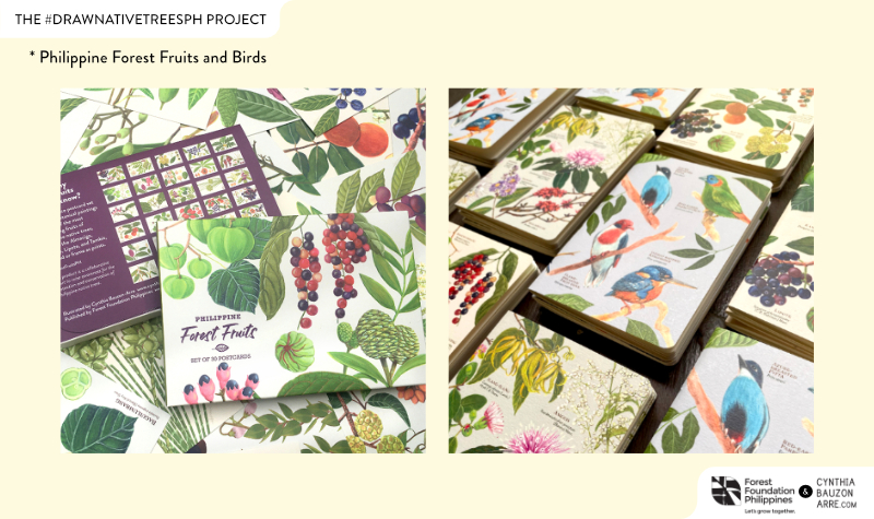 Philippine Forest Fruits and Birds